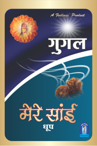 pouch_dhoop_mere-sai_gugal