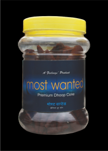 dhoop-jar-most-wanted1